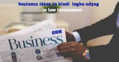 business ideas in hindi laghu udyog in low investment