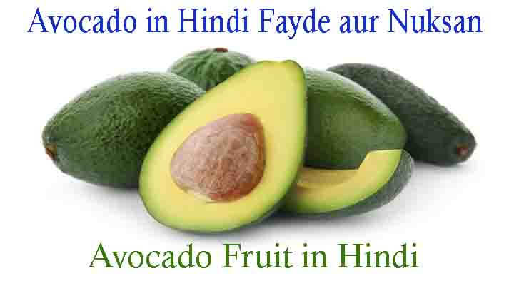 Avocado in Hindi Fayde aur Nuksan - Avocado Fruit Hindi