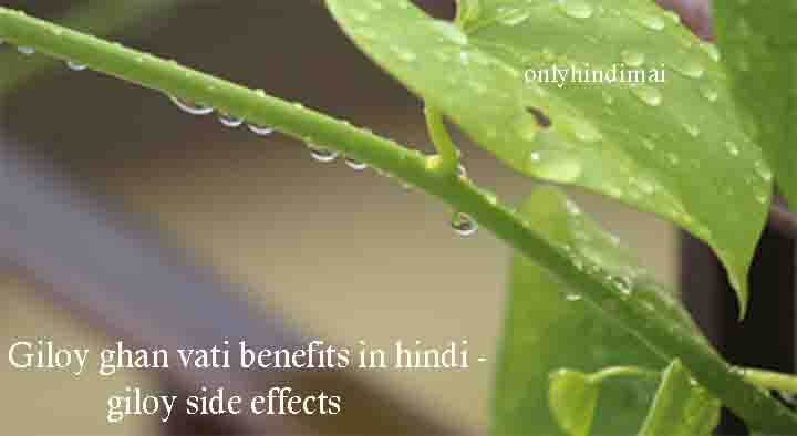 Giloy Ghan Vati Benefits in Hindi - Giloy Side Effects